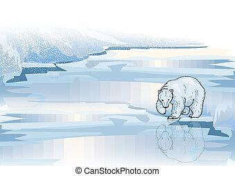 Polar Bear On Ice 1