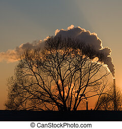 Smoke at sunset - On a background of an orange sunset the...