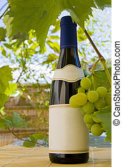 Wine bottle and grapes - Red wine bottle with grapes on the...