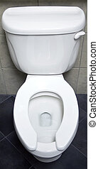 Another Toilet - The bowl, seat, and tank of a white...