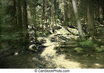 Magical Mountain Stream - Sunlights golden glow illuminates...