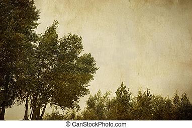 vintage landscape - special sepia toned vintage fx, textured...
