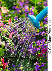 Watering flowers - Close up on water pouring from watering...