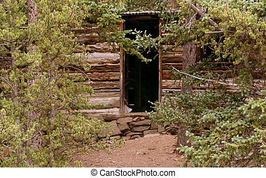 Cabin in the trees - An abandoned log cabin in the mountains...