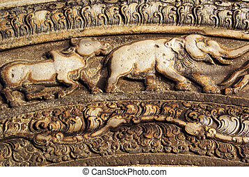 Elephant and cow