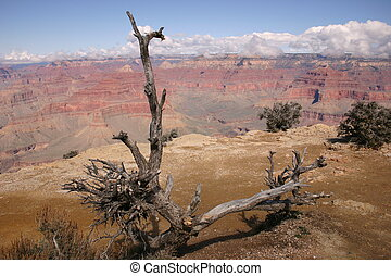 Canyon lanscapes - The bare yet gorgeous landscapes of the...