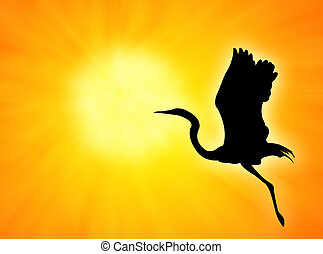Bird silhouette flight against an orange sunset