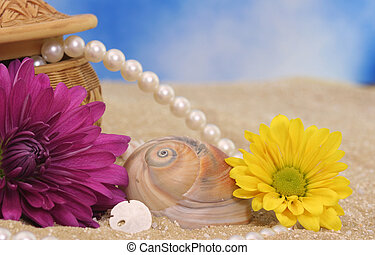 Sea Shells and Flowers