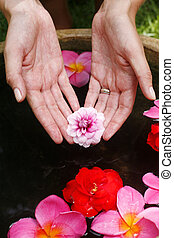 Flower Hand Reflection - Hand offering magnolia flower over...