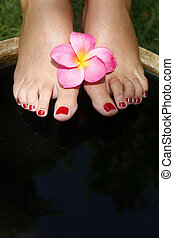 Foot Spa - Feet in bath with pink magnolia flowers