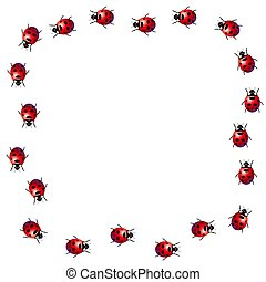 Ladybird frame - Frame made of ladybirds on a white...