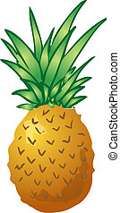 Pineapple - Sketch of a pineapple Hand-drawn lineart look...