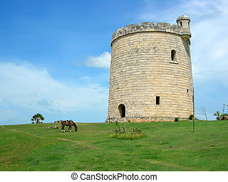 cuban tower - horses grazing a pasture in front of a castle...