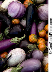 Eggplant Varieties - Multi-colored eggplant varieties at the...