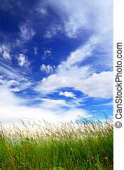 Grass and sky - Natural background of bright blue sky and...