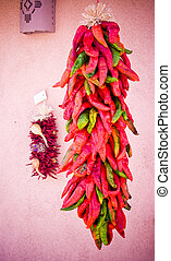 hanging chilis - A bunch of chilis hanging from a string.