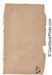 Rose thorn paper - antiqued paper