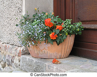 Flower pot with various flowers and plants on a step.