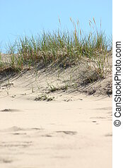 Sand Dune - The smooth sand dunes of Nova Scotia