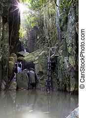 Jungle - Brook in green thailands jungle