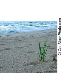 Lake Michigan, USA - The beach at Lake Michigan in the early...