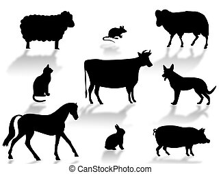 Farm animals silhouettes with shadows on a white background