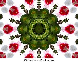 kaleidescope flower - flower kaleidescope