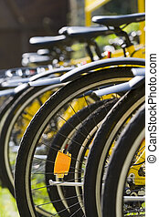 Rack of Bicycles - A rack of yellow bicycles