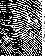 FingerPrint Crop 1