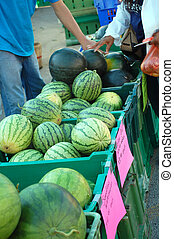 Farmers Market - Watermelons at the Farmers Market