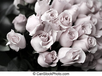 Bouquet from roses. b/w + pink tone