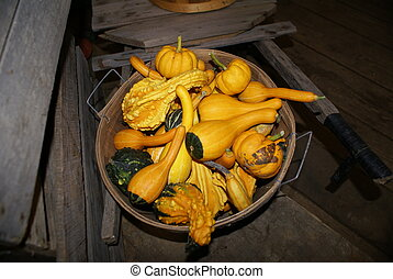 a basket of gourds
