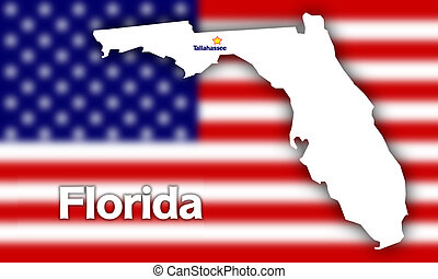 Florida state contour with Capital City against blurred USA...