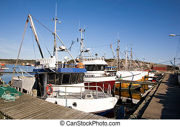 Fishing Boats at Dock - A number of fishing boats sit at...