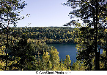 Forest Lake - A lake in the middle of a forest. Near Oslo,...