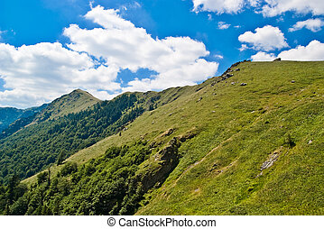 Mountain Landscape - Landscape in Mountain, Old Mountain,...