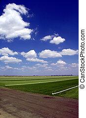 Sod Farming - Green Grass Sod Farmland under Puffy White...