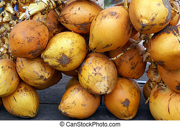 Coconuts - Tropical yellow fruit coconuts in Sri Lanka...