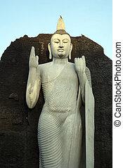 Statue Buddha Aukana