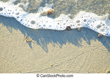 Drawing water on a beach - Drawing water of ebb and flood.