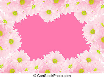 daisy background - pink daisy background or border for...