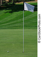 Golf Green - A golf green with a ball closing on the hole