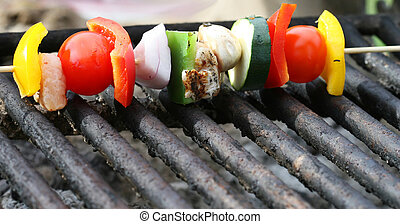 Kabobs - Grilling a kabob during a summer picnic at the park