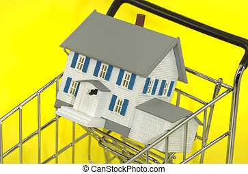 Home For Sale - Photo of a Minature House in a Shopping Cart...