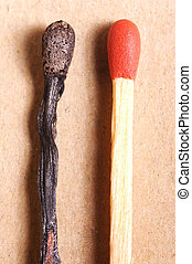 Matches - Two Matches, one used and one unused