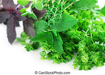 Assorted herbs - Bunch of fresh assorted herbs on white...