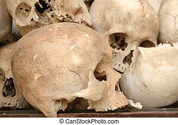 skulls from the infamous s21 prison in cambodia