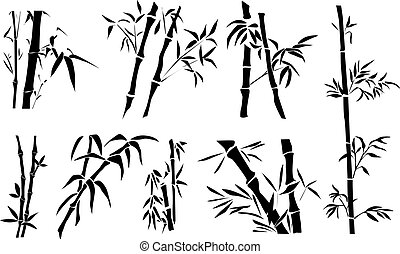 Bamboo, different twigs