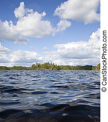Look from the water - island in the forest lake...