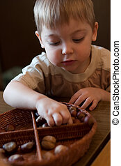 learning boy - little boy playing with basket and nuts in...